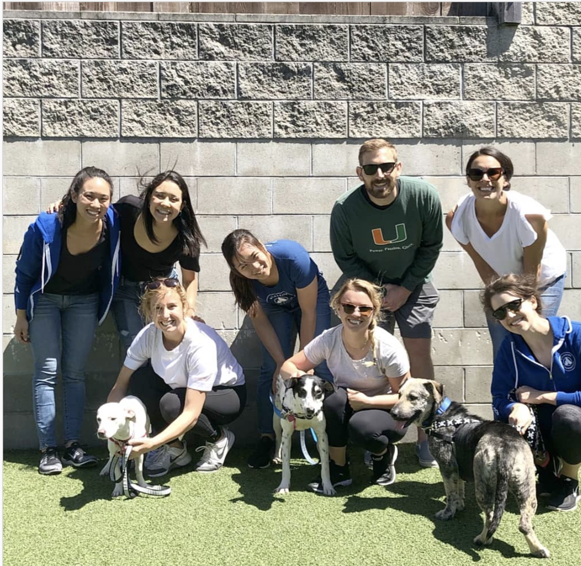 Group picture at Family Dog Rescue in SF