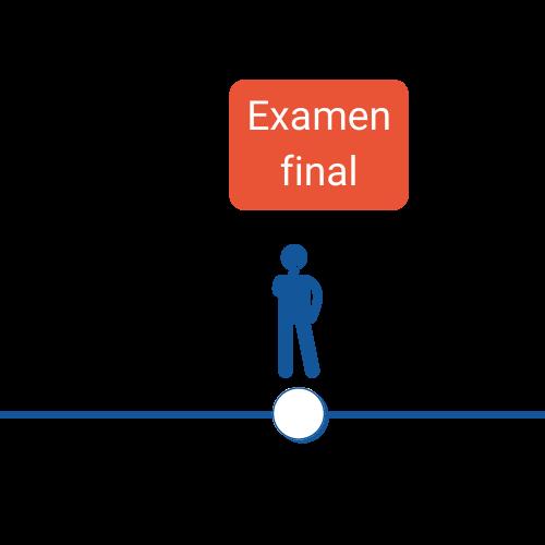 Icone 4. Examen final