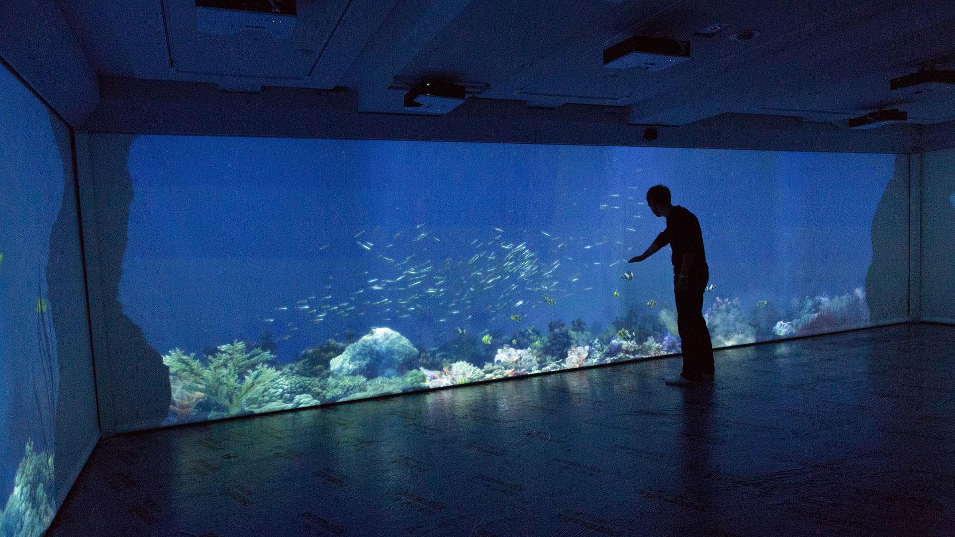 Deep Blue Interactive Aquarium (Immersive)