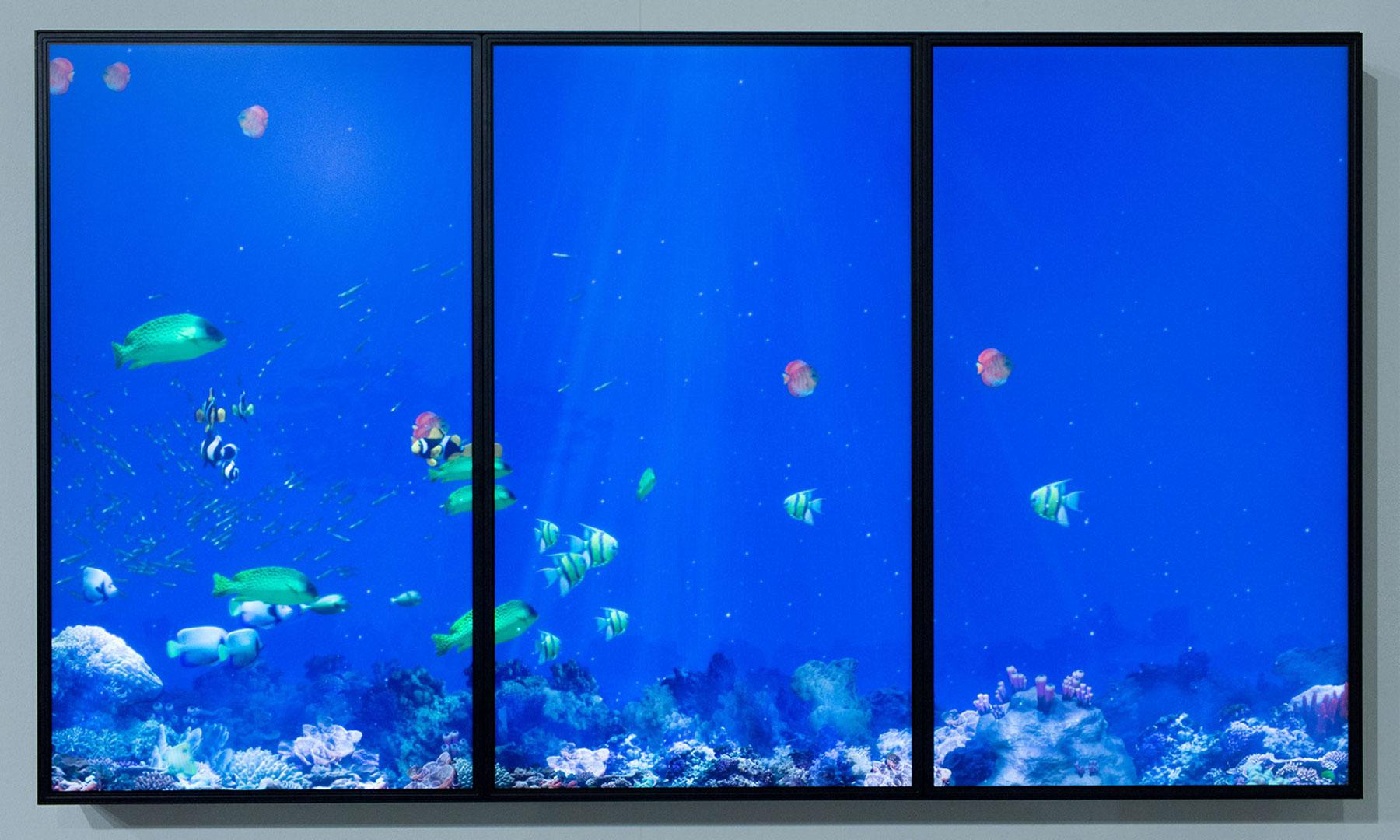 Deep Blue Interactive Aquarium
