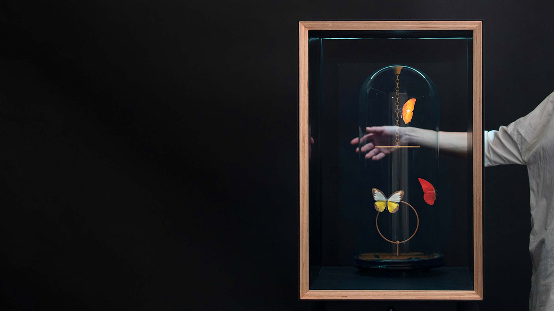 Flutter Hologram: Pendulum