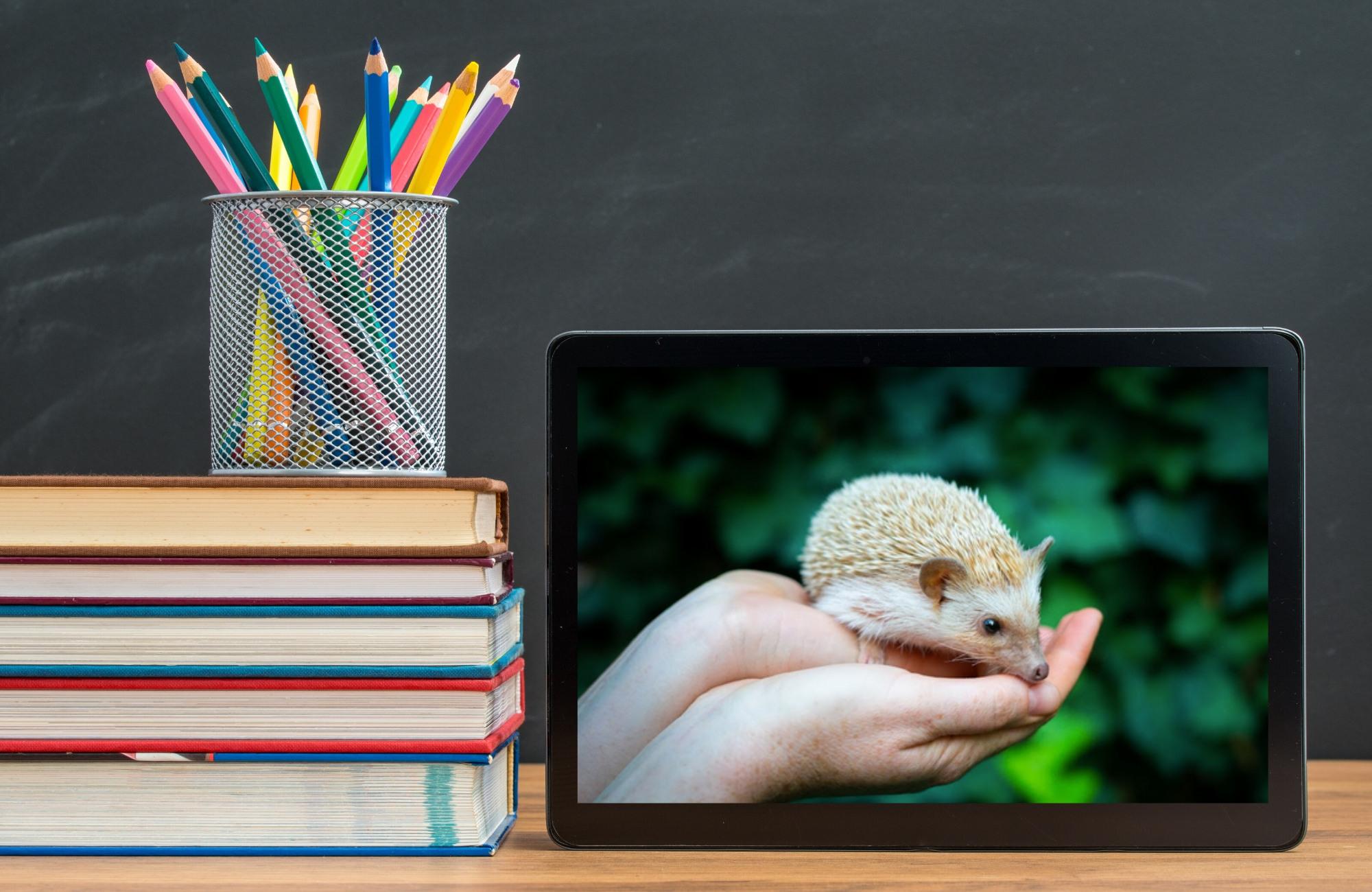 Virtual Classroom Hangout