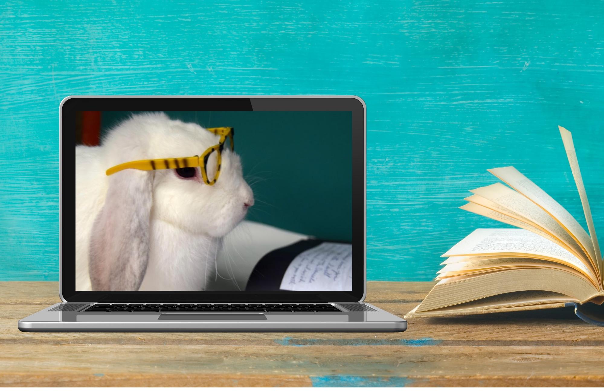 Virtual Library Hangout