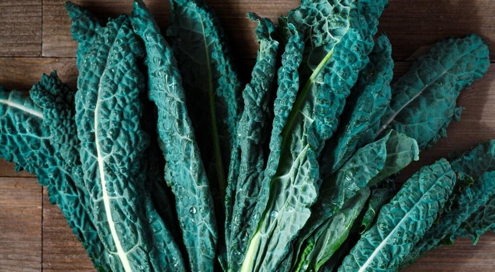 Kale Celebration