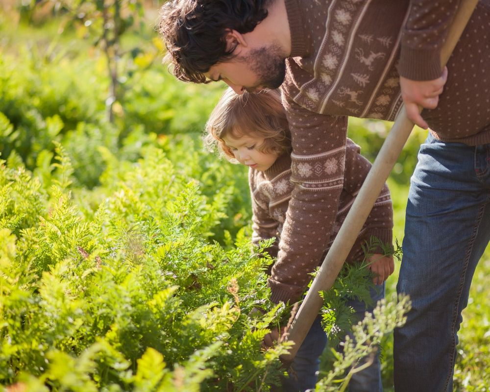5 Tips for Starting a Garden with Kids