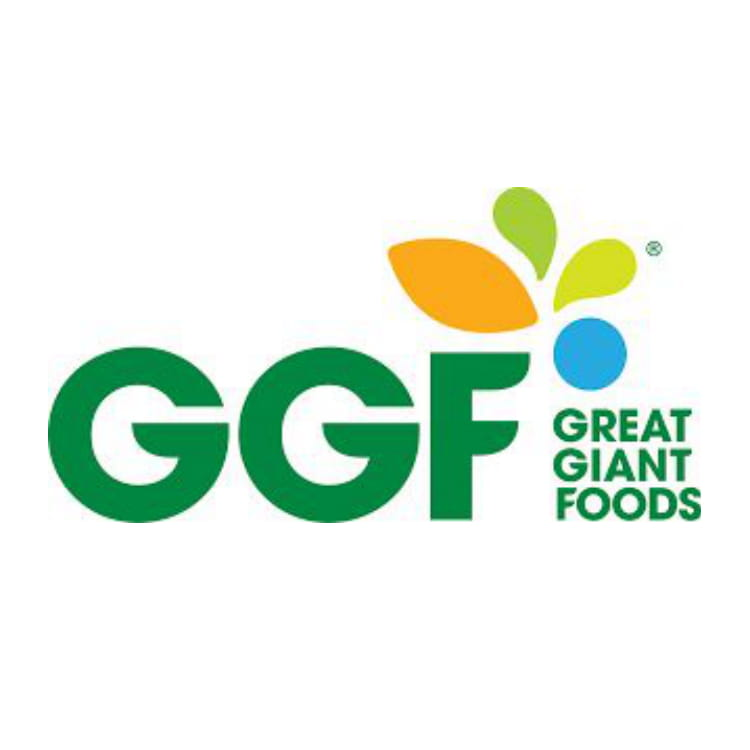 great giant food