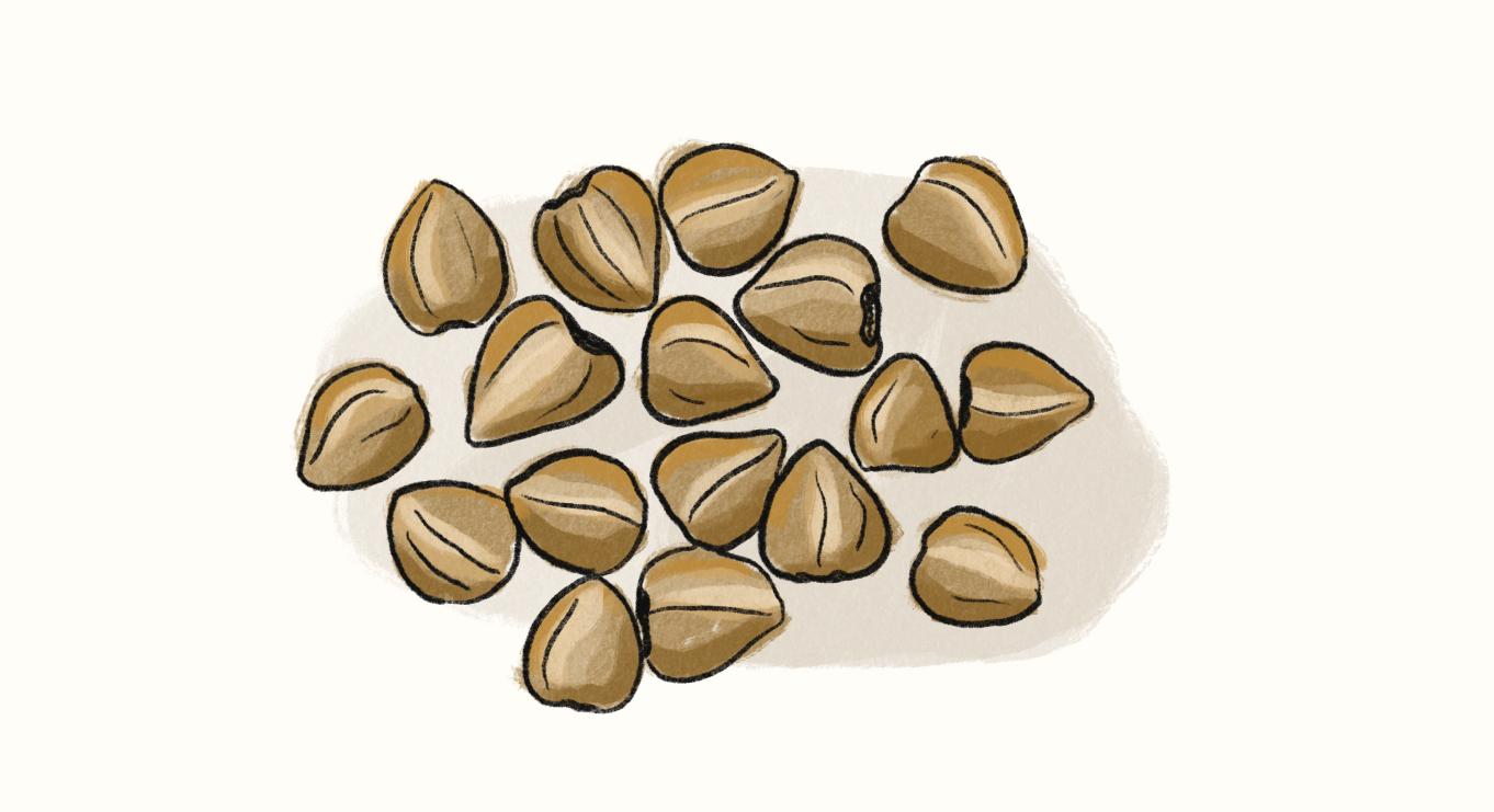 A handful of buckwheat seeds