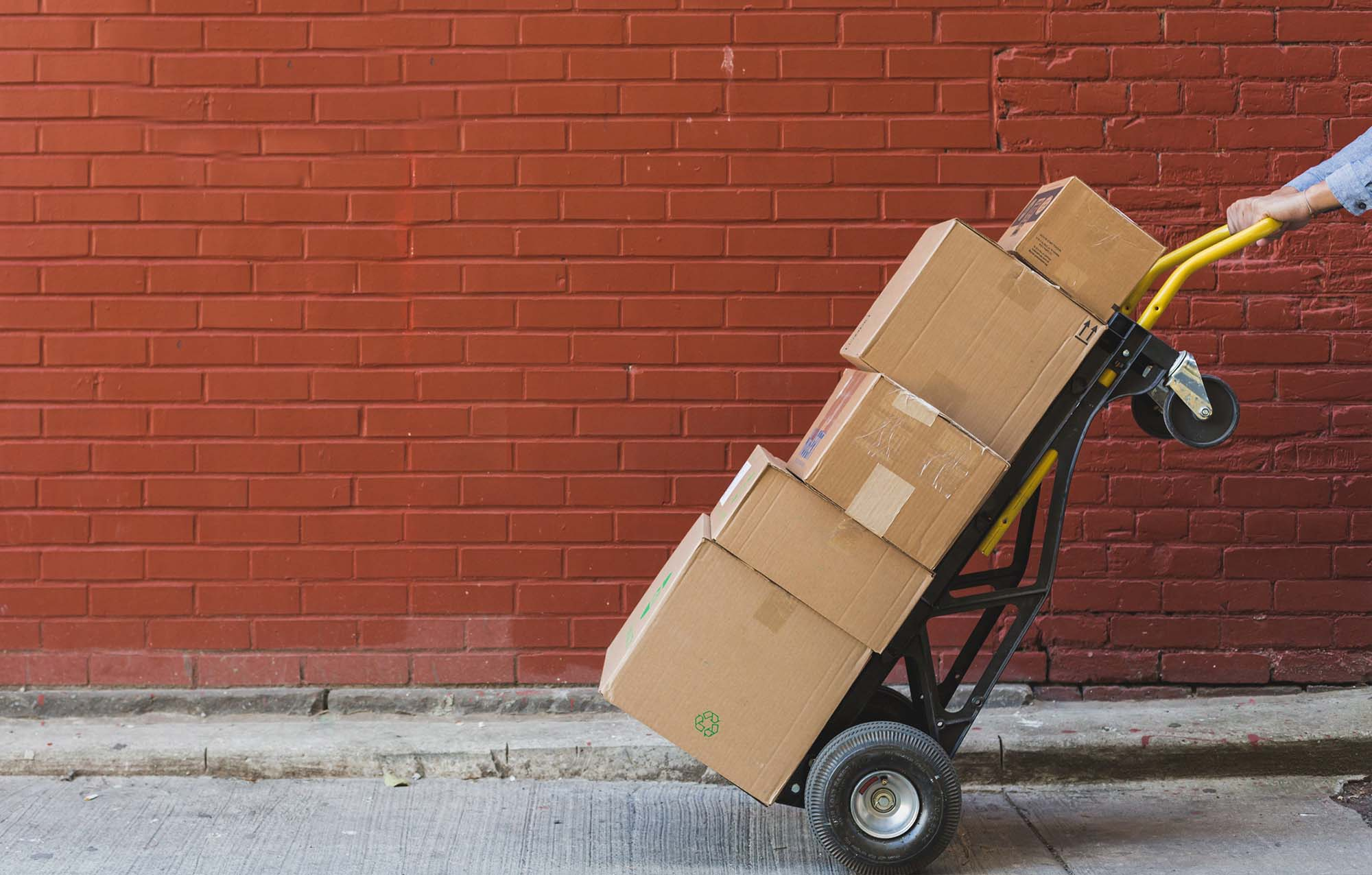 8 High-Performing B2B Ecommerce Sites Pivofy Successfully Migrated to Shopify Plus