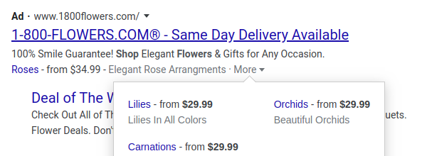 Ad Extensions Google Ads