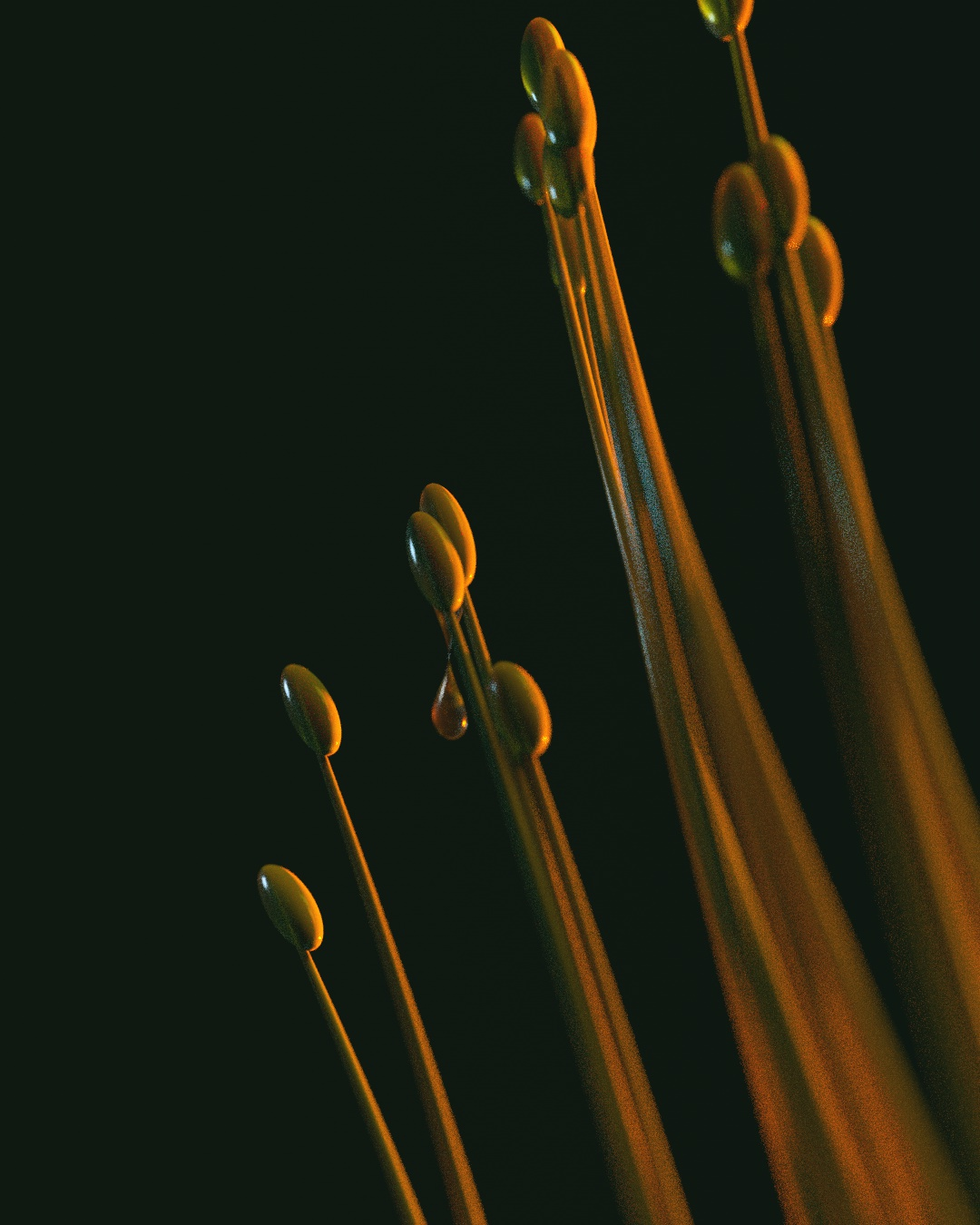 A drop of water about to fall from a bunch of stems