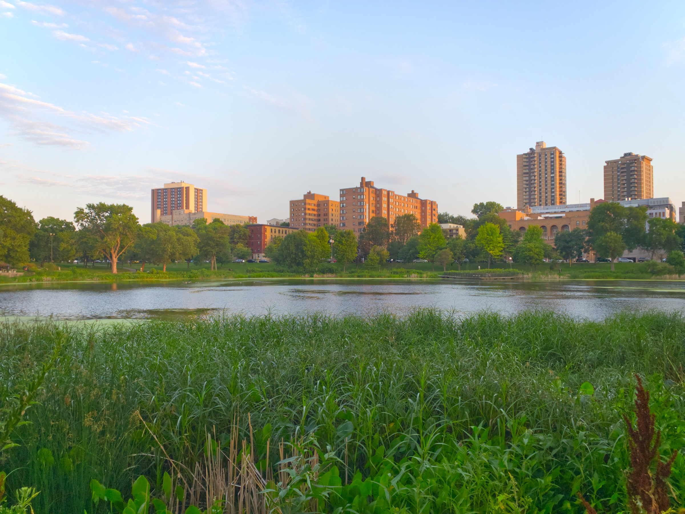 About Loring Park