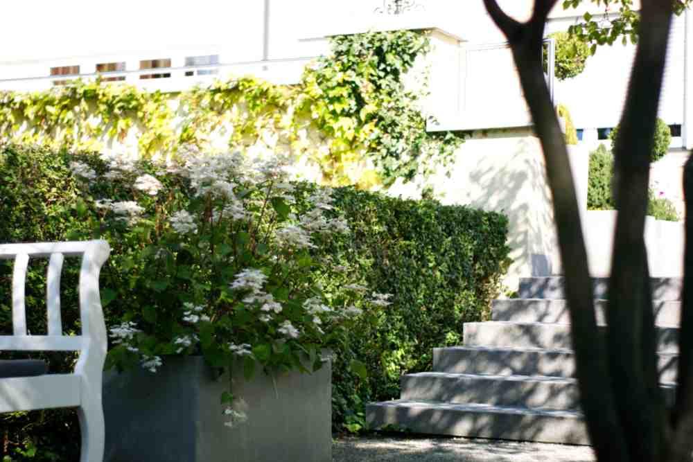 Hotel am Schlosspark zum Kurfürst Rock pear garden