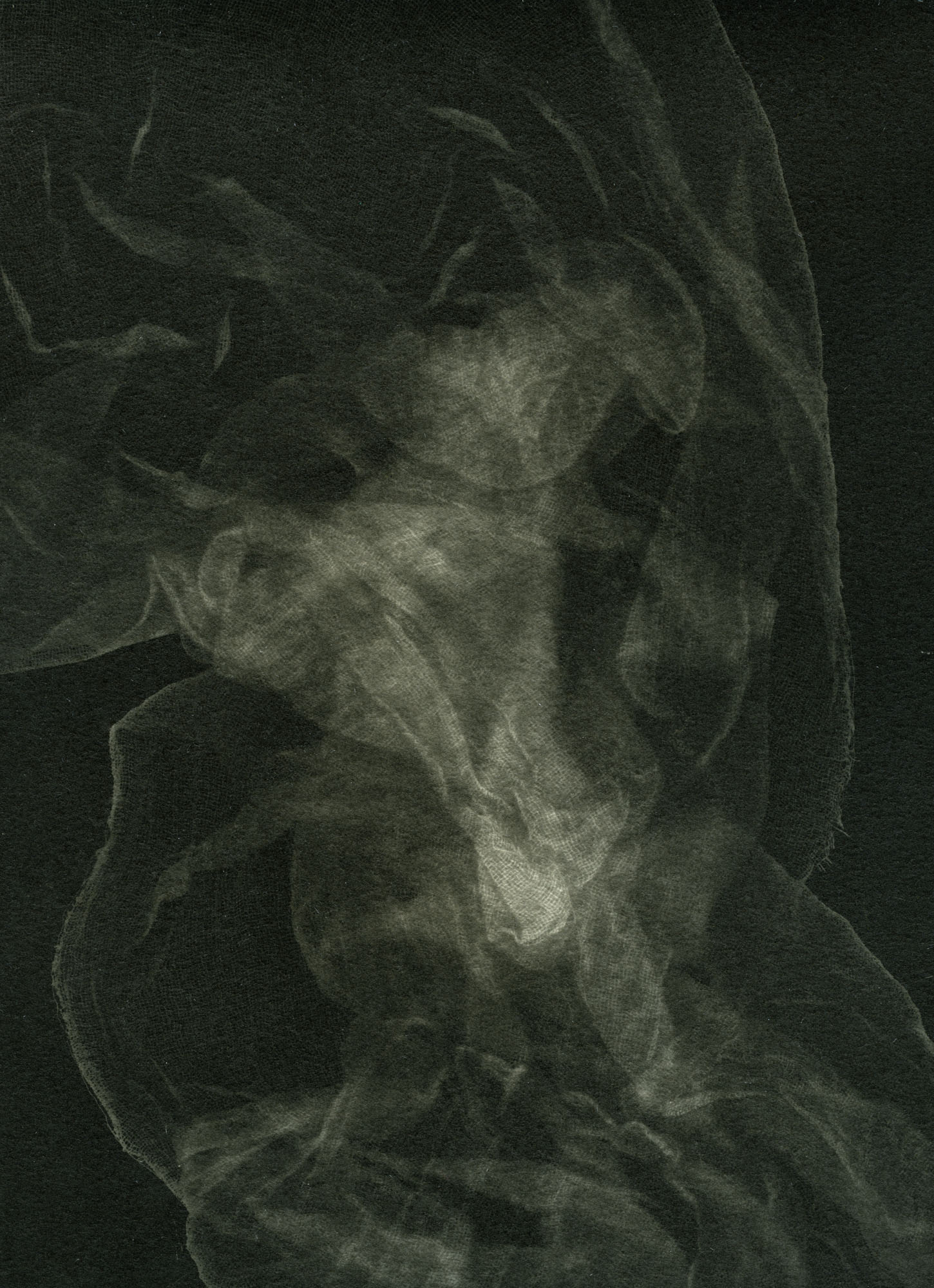 A photogram of a gauze like material.