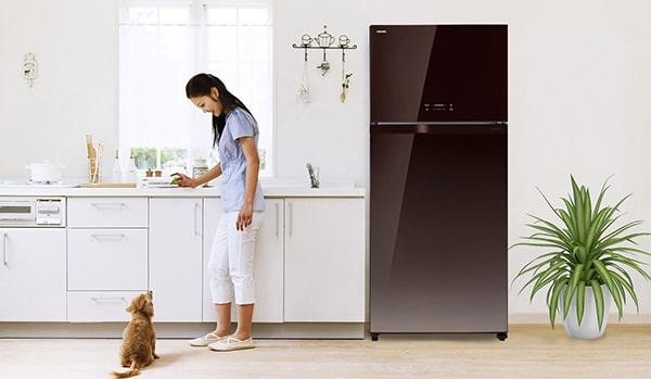 Tủ Lạnh Inverter Toshiba WG66VDAZ-GG (600L)