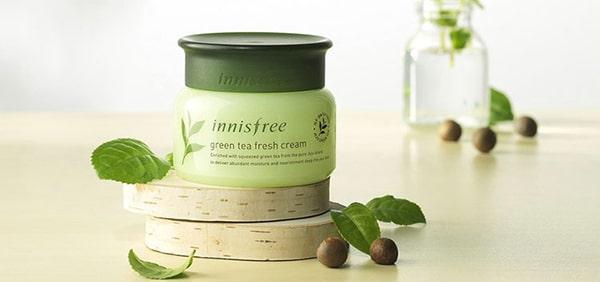 Kem dưỡng Innisfree Green Tea Fresh Cream dành cho da dầu mụn