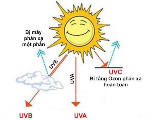 Kem chống nắng quan trọng như thế nào?