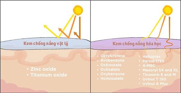 Kem chống nắng vật lý là gì ?