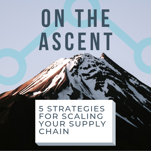 Omnichain™ Offers Five Strategies for Scaling Supply Chains and Effectively Managing Growth