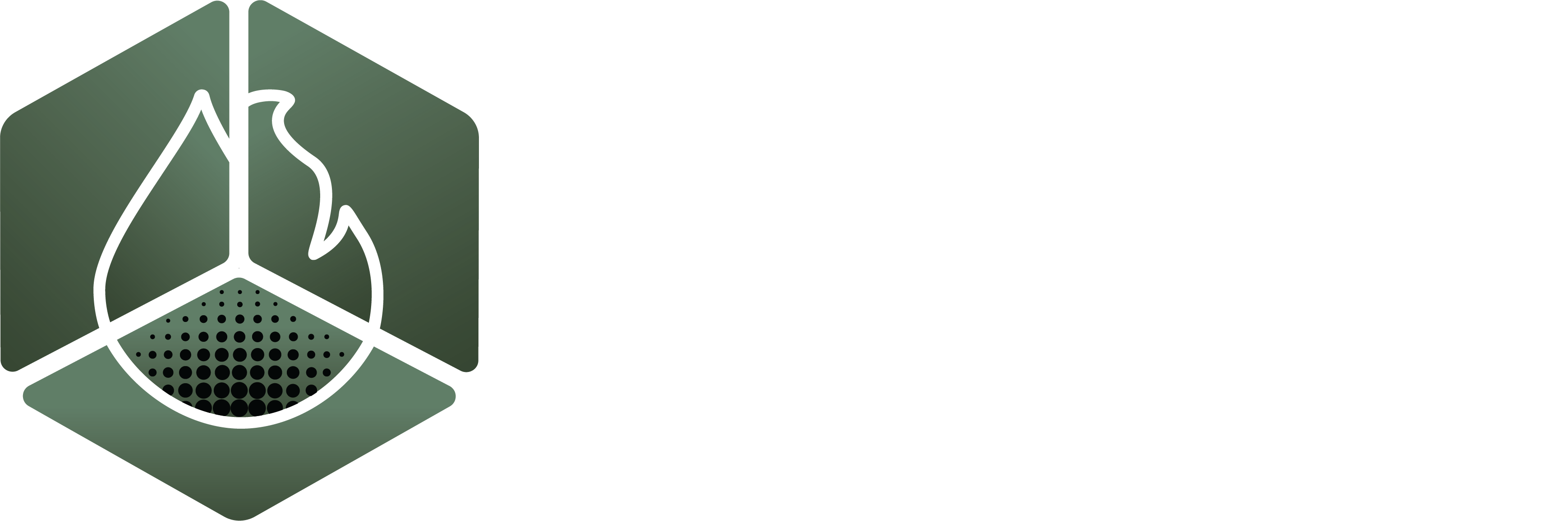 Mould / Biohazard Restoration