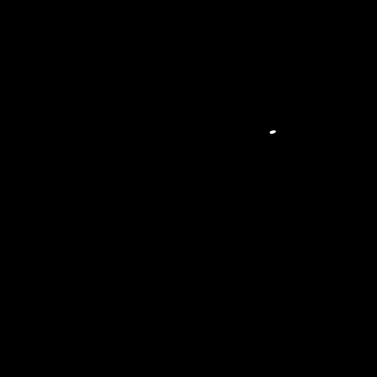 Byppo Hippo Logo in circle