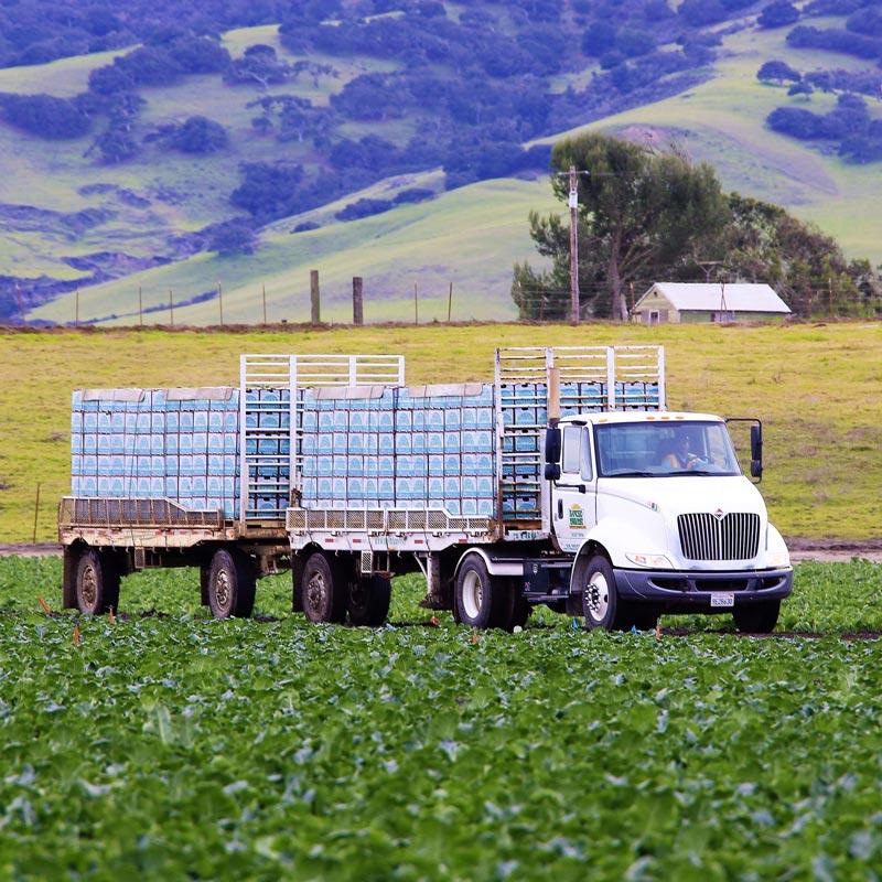 Transportation Truck in a field