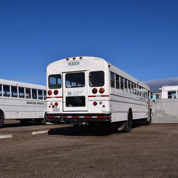 Fleet of Rancho Nuevo Harvesting Bus Fleet