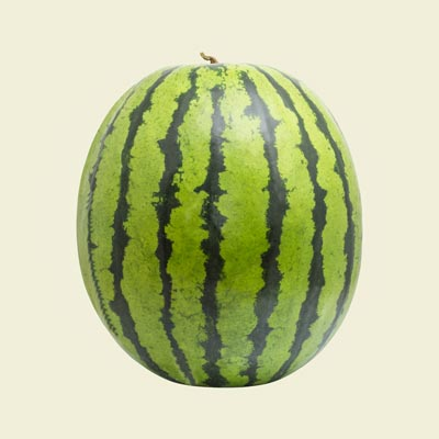 What we harvest: Watermelon