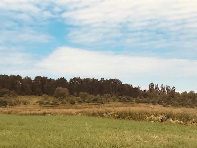 Fallowland
