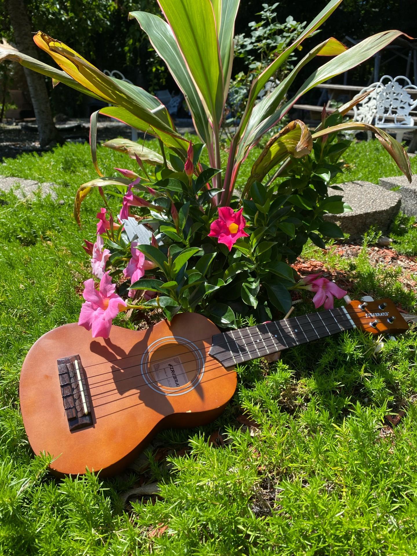 A Ukulele in front of flowers. Photo courtesy of Bendu David.