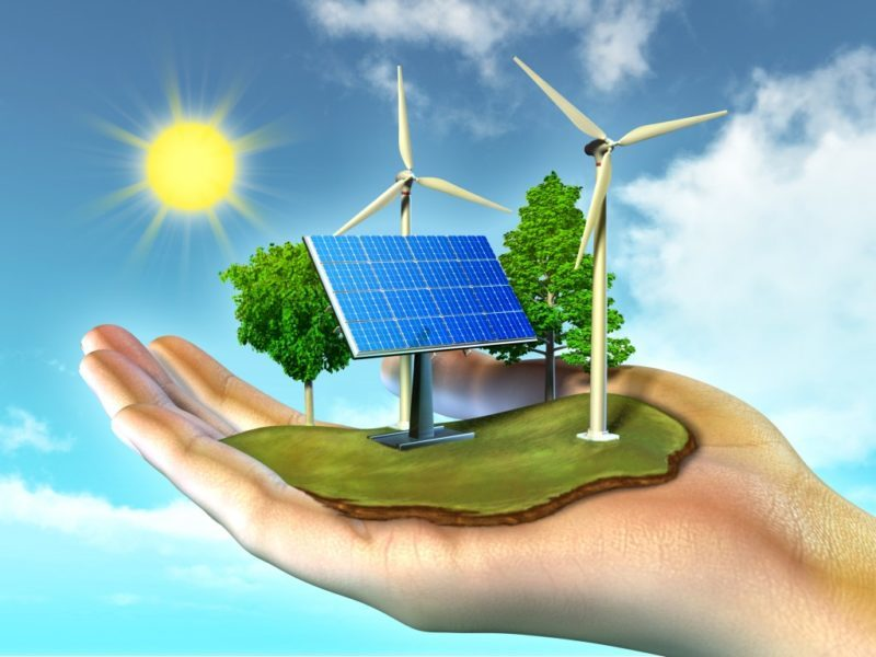 A hand holds a small field of solar panels and wind towers in its palm.