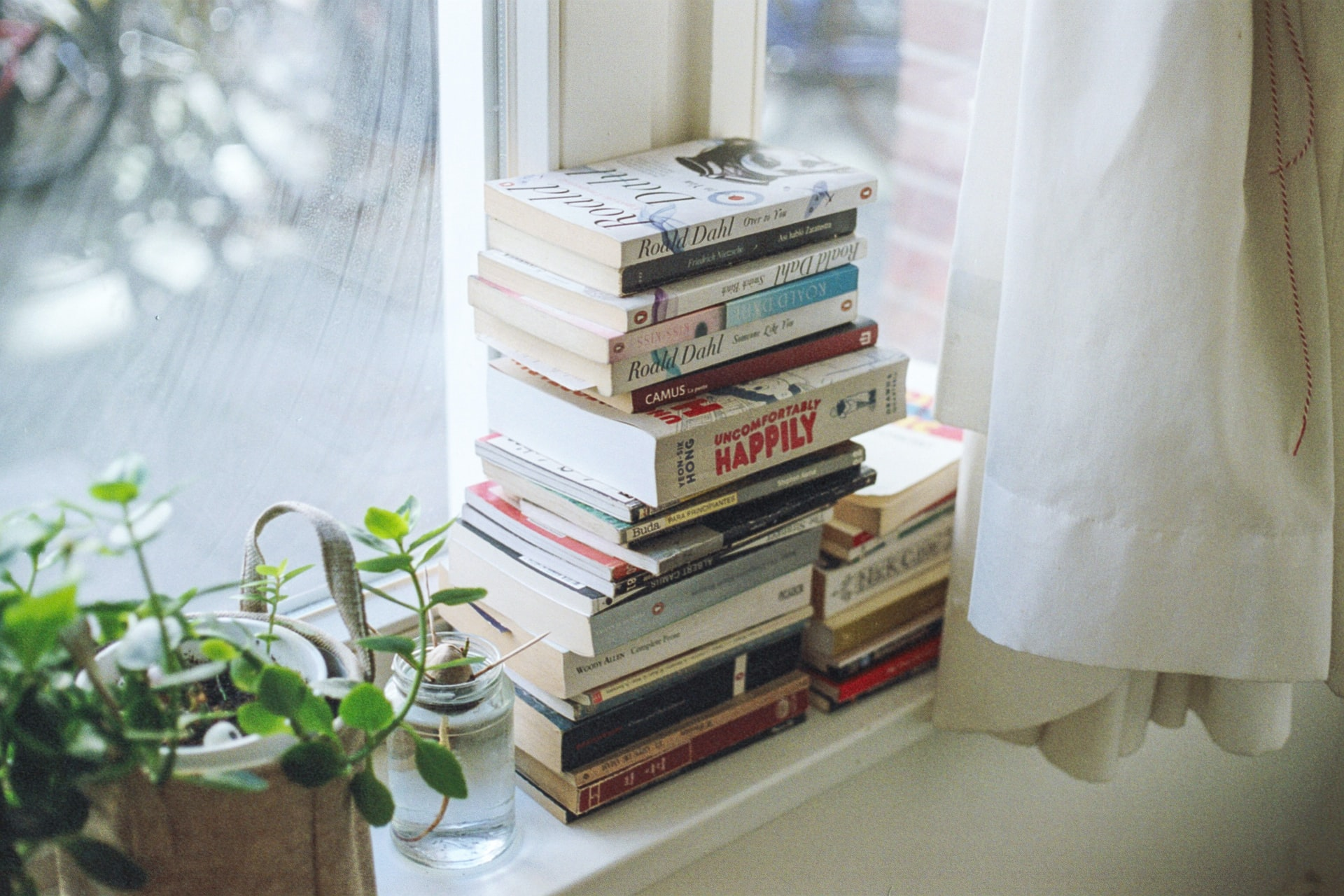 Books of assorted titles stacked on a windowsill next to a houseplant. Photo courtesy of Florencia Viadana on Unsplash.