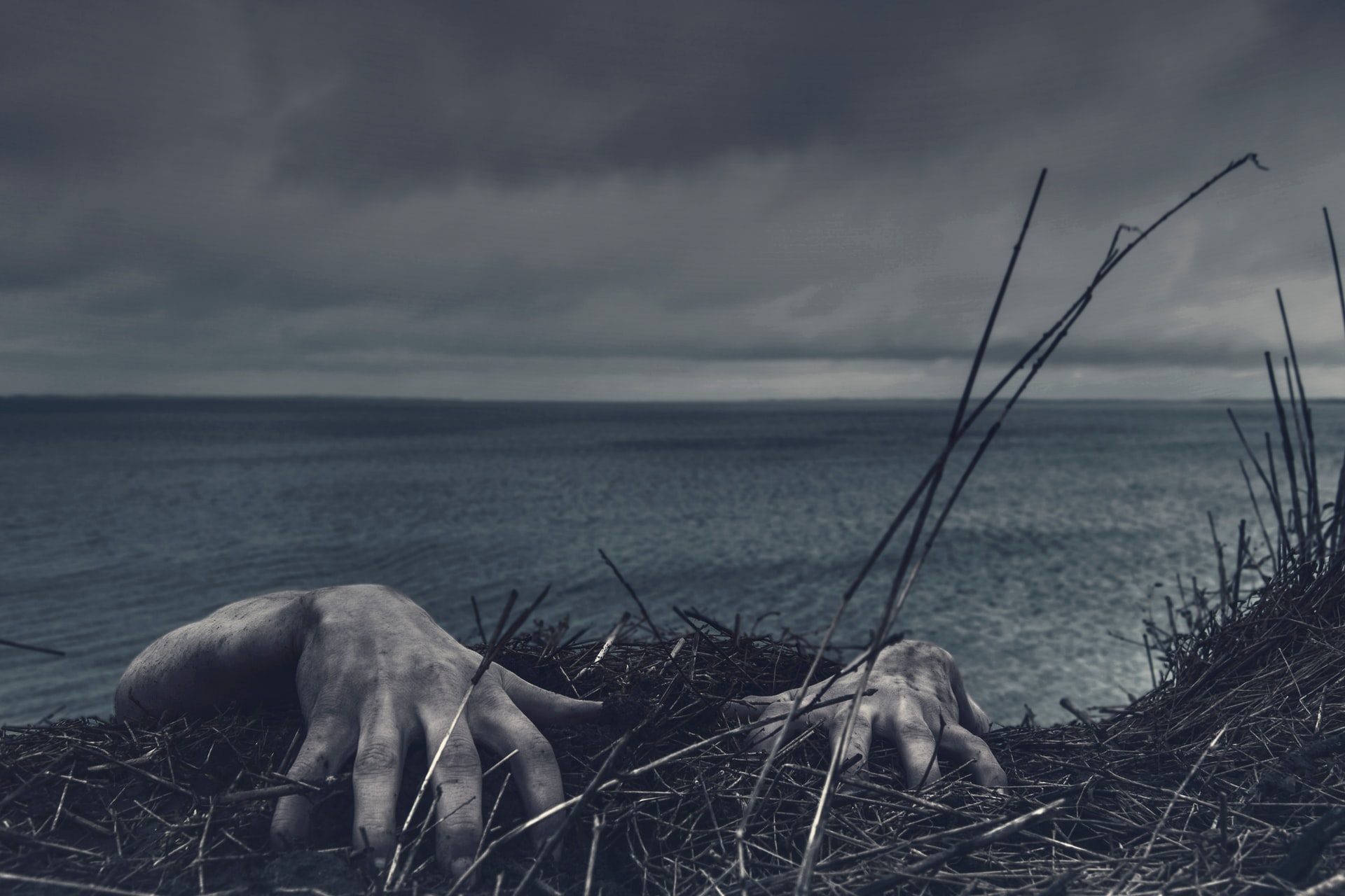 Zombie hands climb up from the ocean. Photo courtesy of Daniel Jensen on Unsplash.