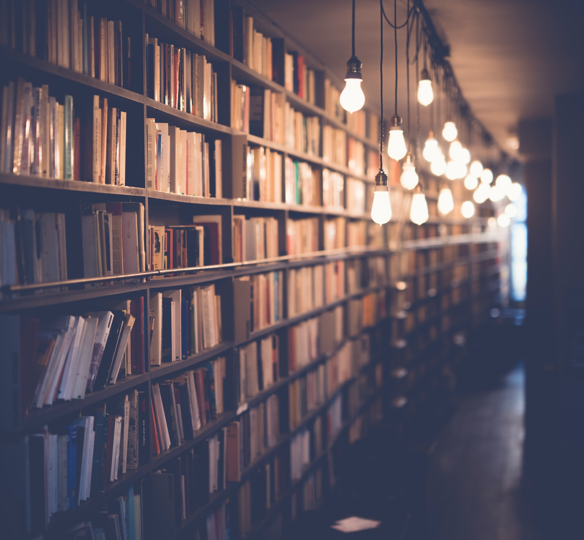 Library with hanging light bulbs. Photo courtesy of Janko Ferlič on Unsplash.