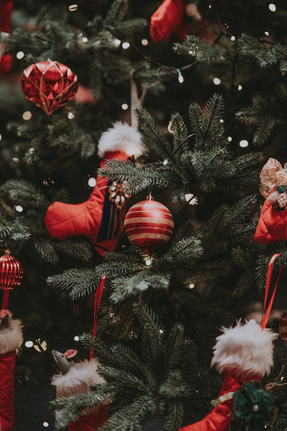 Red ornaments hanging on a Christmas tree. Photo courtesy of Annie Spratt on Unsplash.