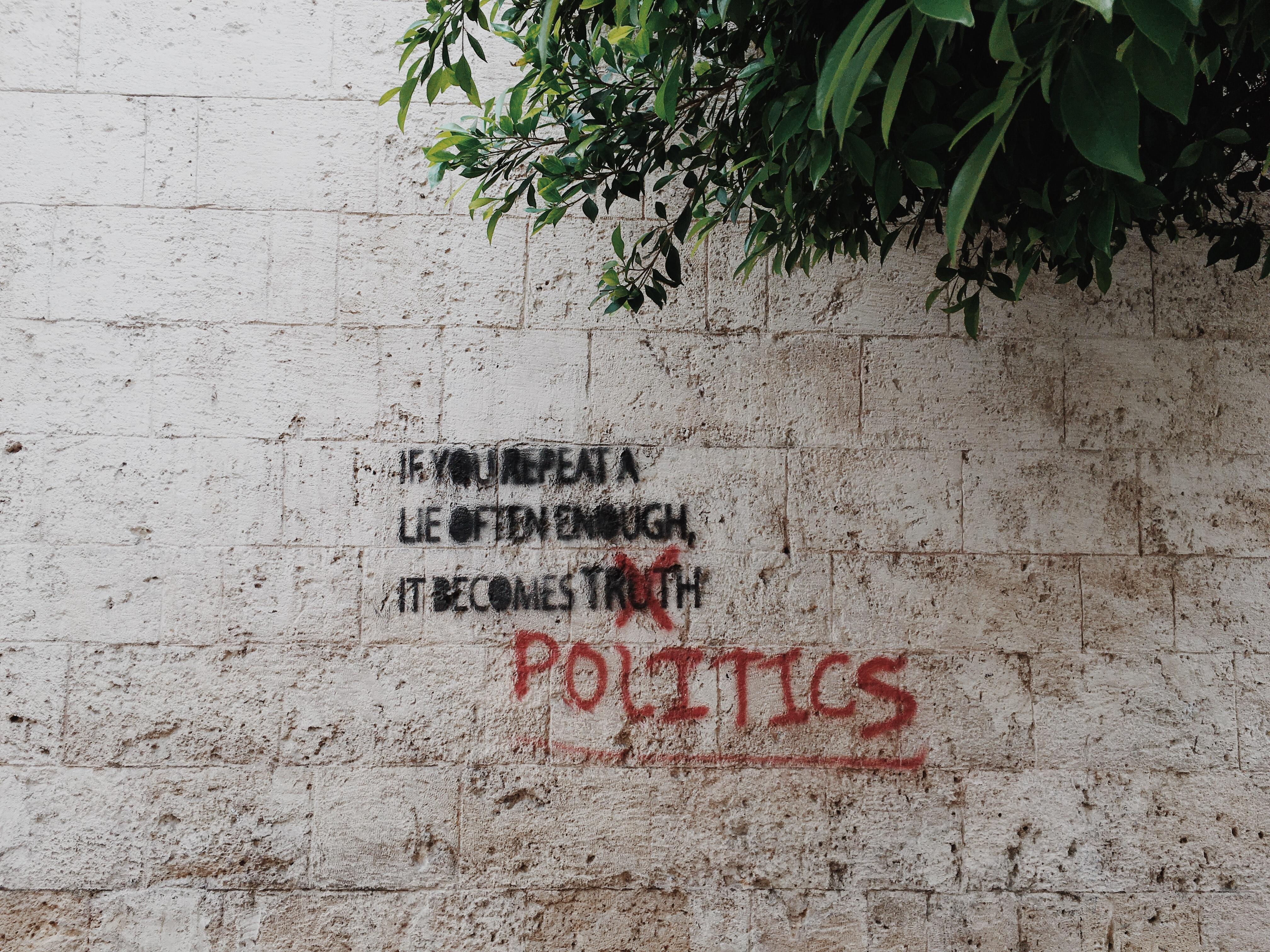 "Image of writing on an outdoor wall, ""If you repeat a lie often enough, it becomes t̶r̶u̶t̶h̶ politics."" Photo courtesy of Brian Wertheim via Unsplash."