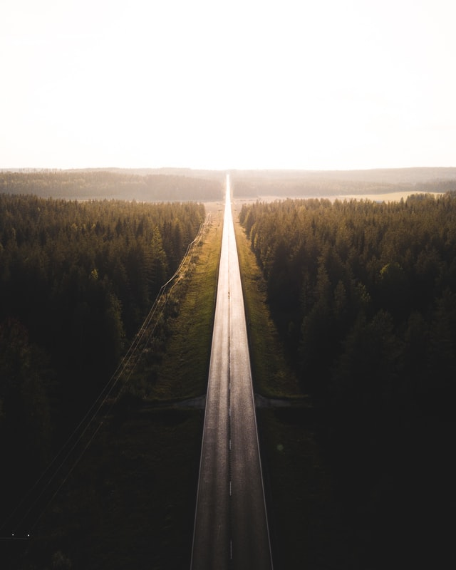 Black road surrounded by trees. Photo courtesy of Taneli Lahtinen on Unsplash.