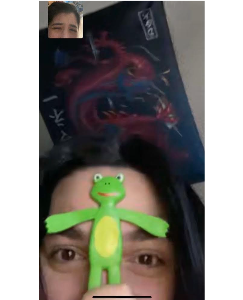 A FaceTime screenshot of the author and her best friend, Alex, holding a plastic frog. Photo provided by the author.