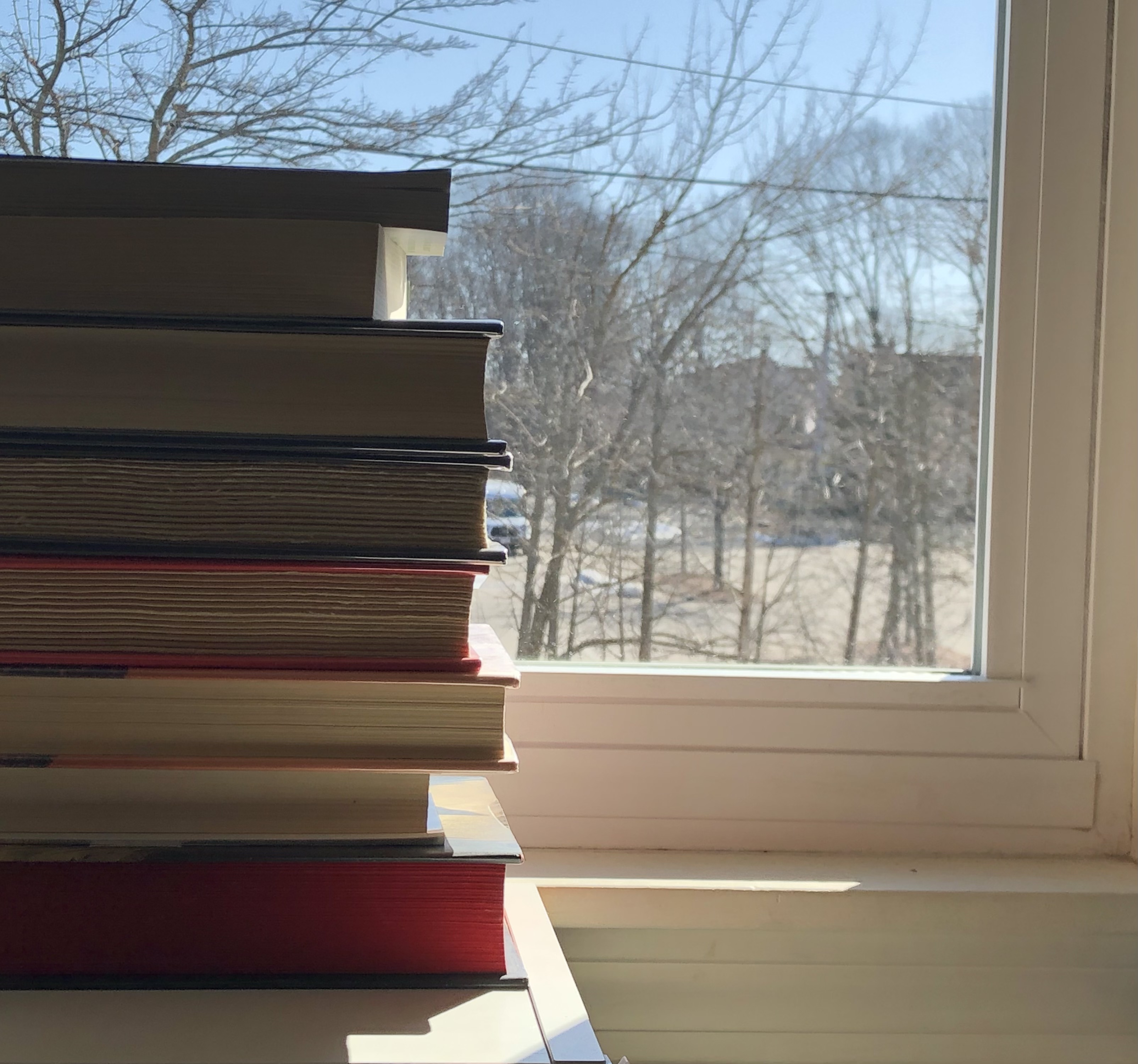 A stack of books in front of the author's window. Photo taken by the author.