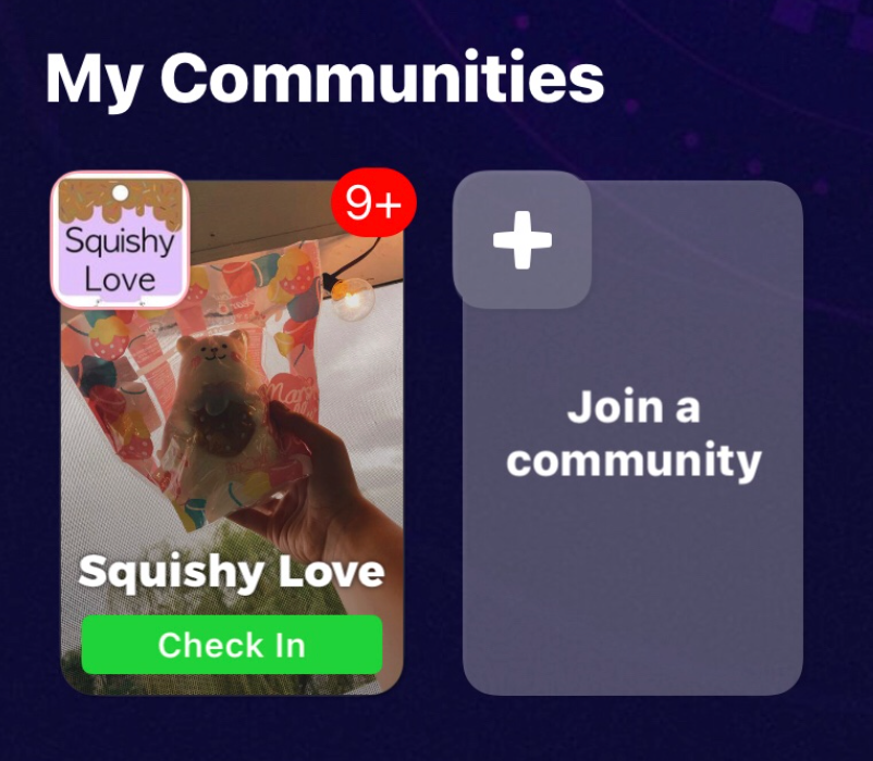 A screenshot of a squishy community the author participates in. Screenshot by Alena Tran.