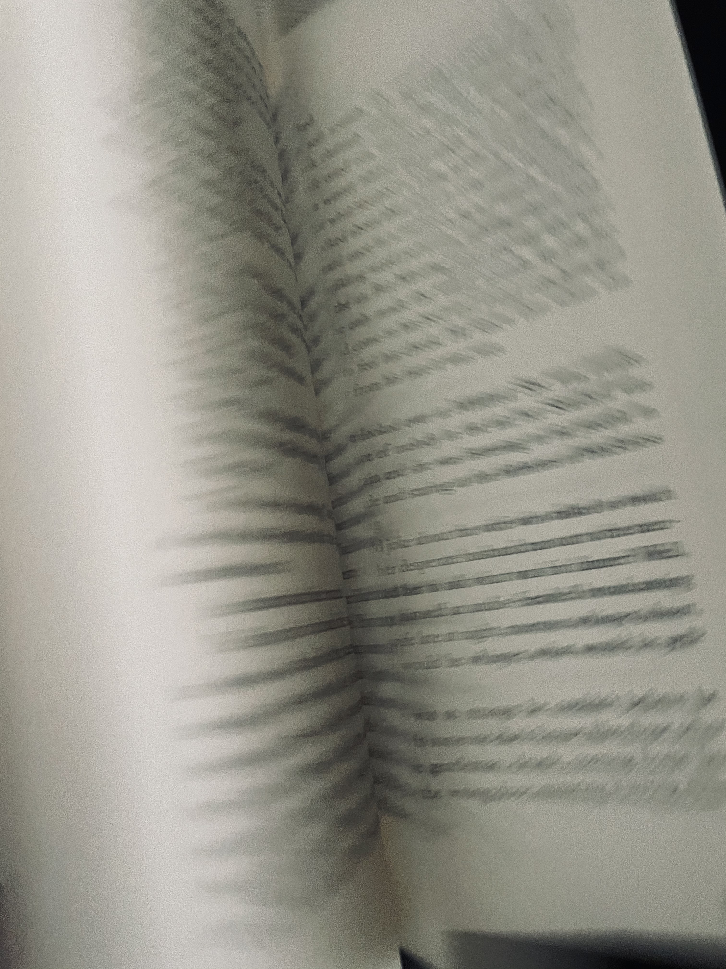 The motion of book pages turning. Photo taken by the author.