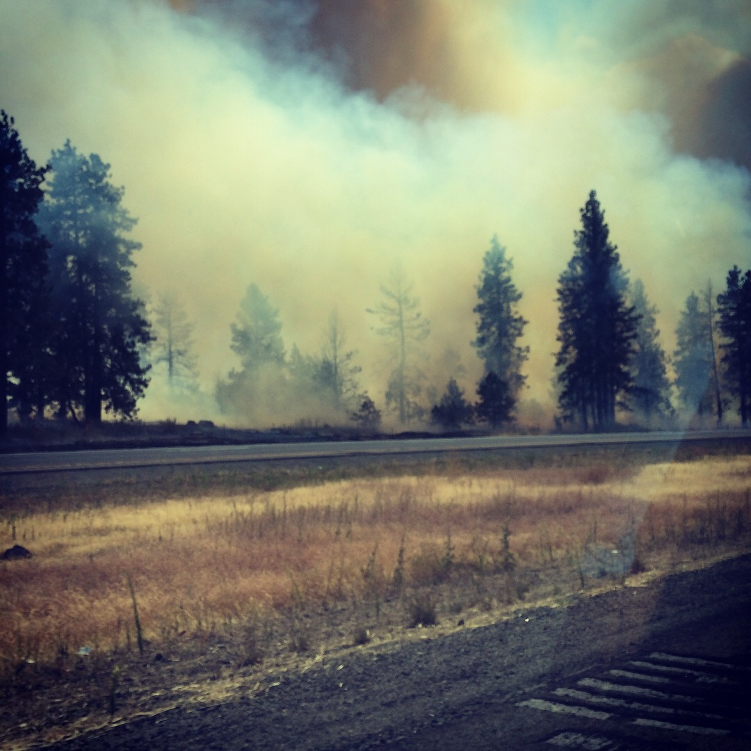 View of smoke from the author's car window. Photo taken by the author.