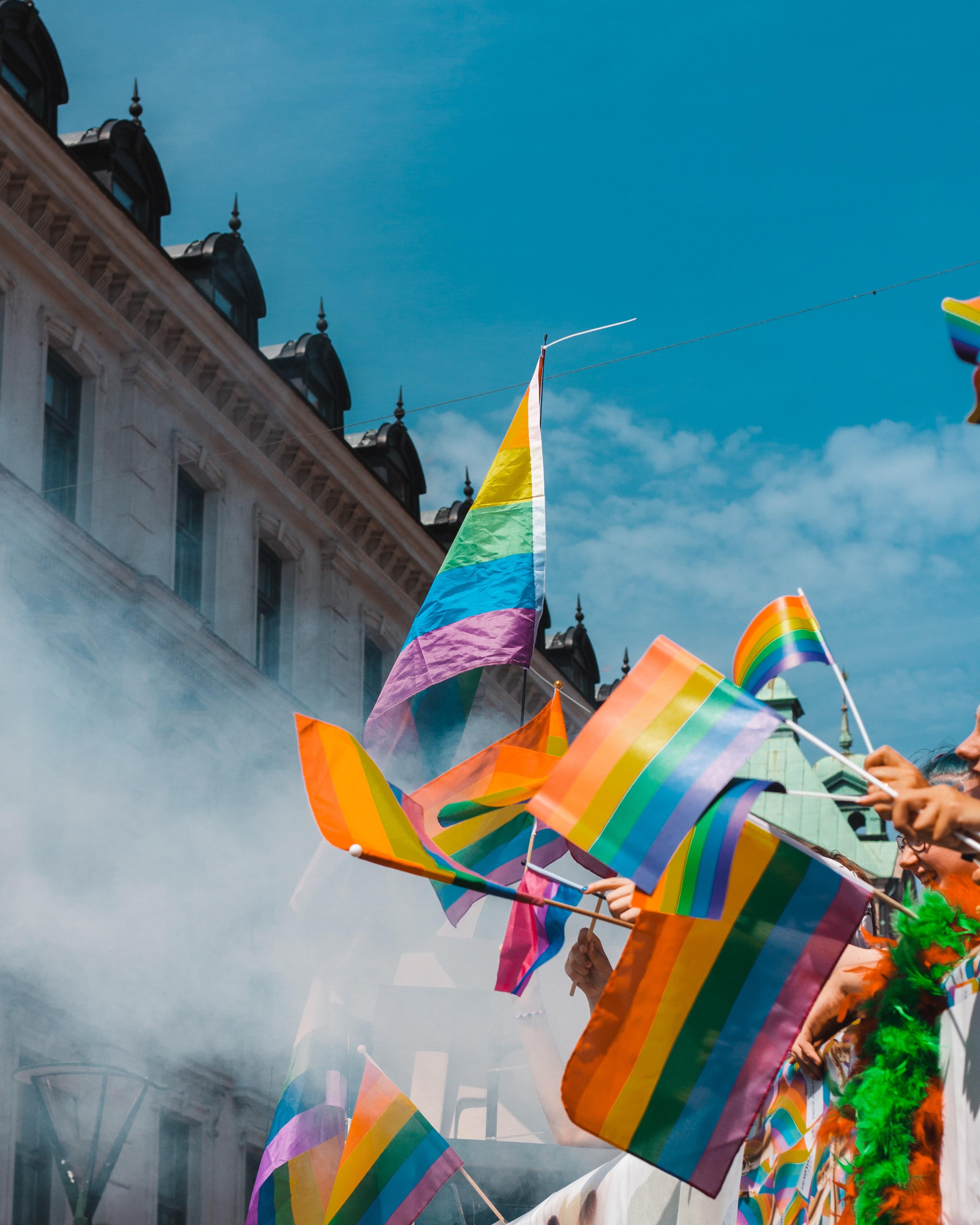 Raised rainbow pride flags. Photo courtesy of Teddy Osterblom on Unsplash.