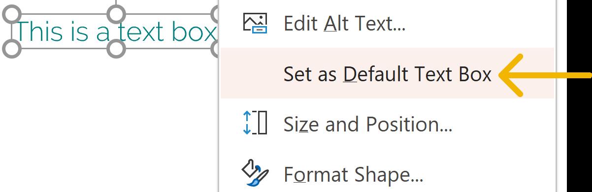 Screenshot of the 'Set as Default Text Box' option