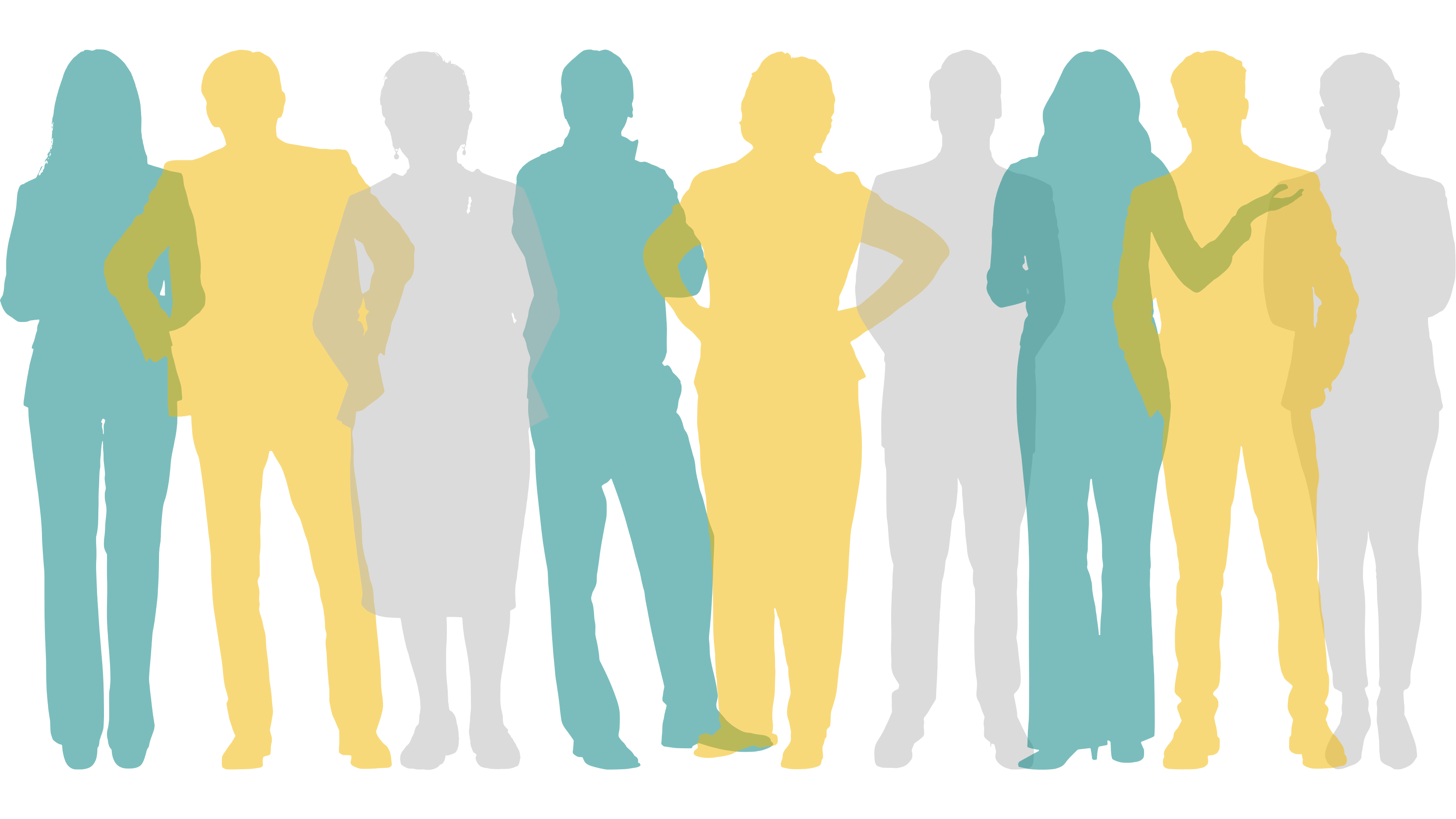 Group of slightly overlapping coloured silhouettes, same as picture above but with some transparency t better see full outline of all people