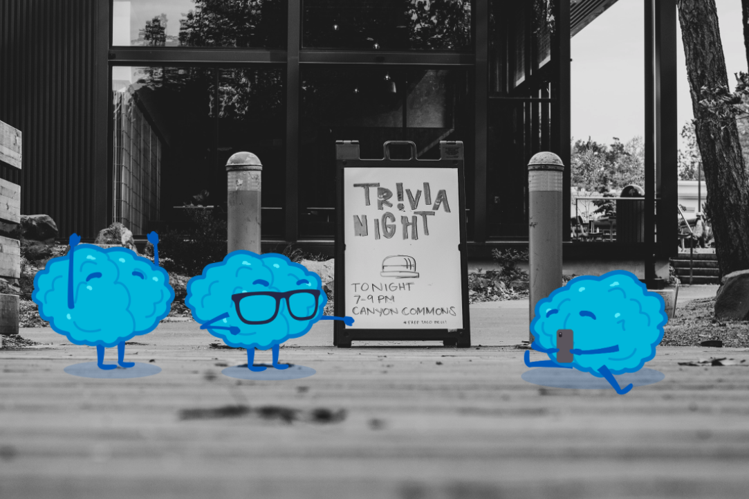Founding a Company from Our Passion for Trivia
