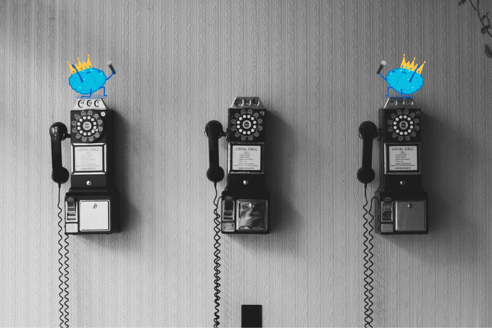 Telephone brains