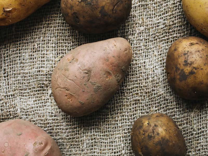 An image of potatos.