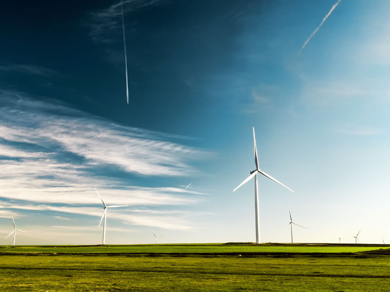Eolic energy field.
