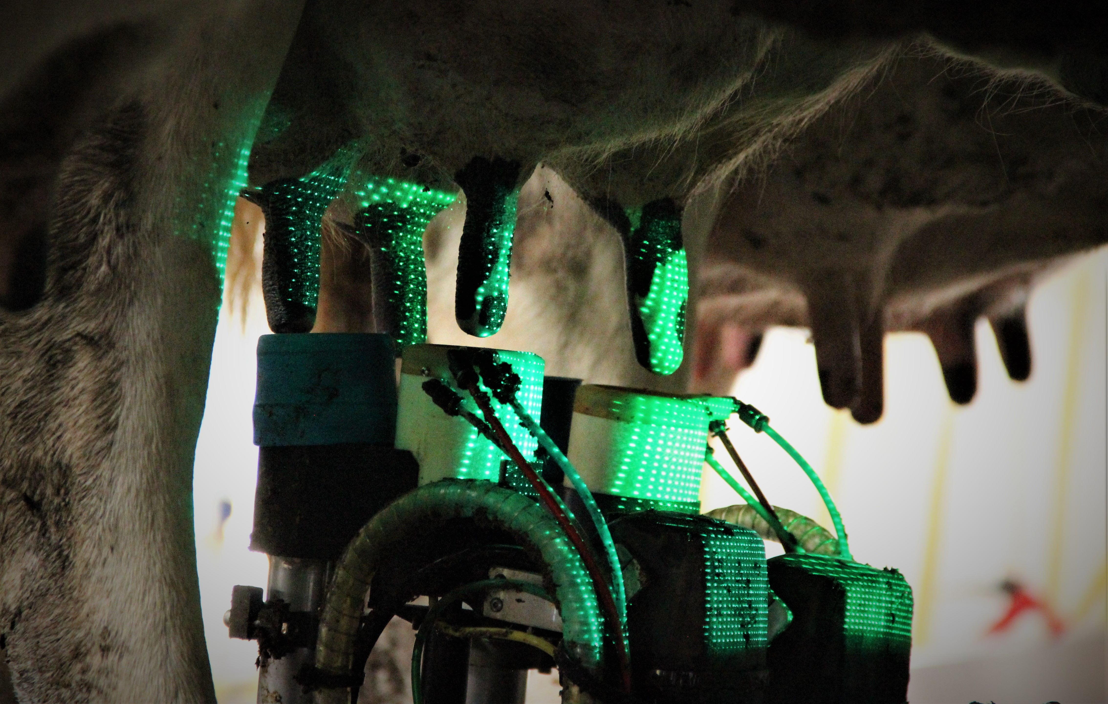 miRobot - Unique Cleaning & Preparation Process