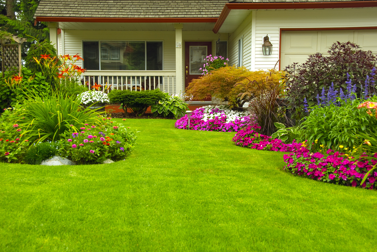 Add New Landscaping to Increase Property Value